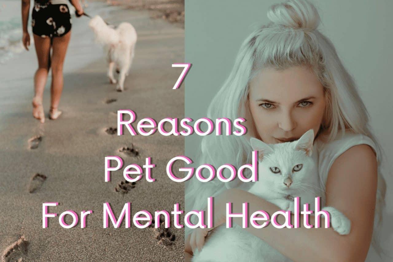 pet good mental health