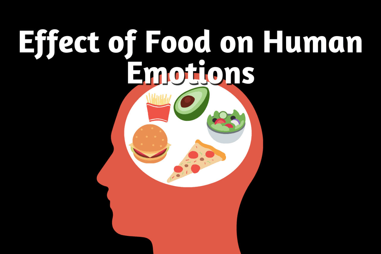 effect of food on human emotions.